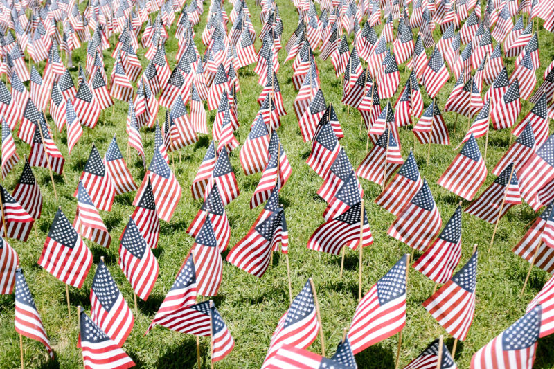 Rows of little American flags put into the grass.